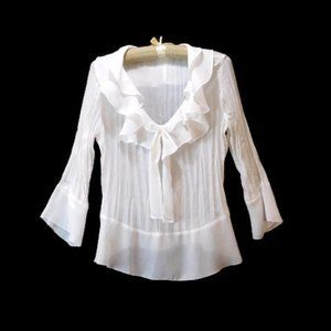Allison Taylor Sheer Crinkle Ruffle Career Top